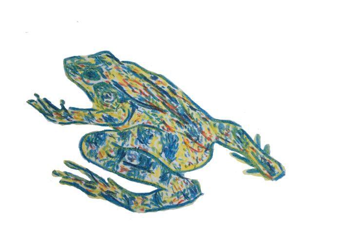 обряд с лягушкой
